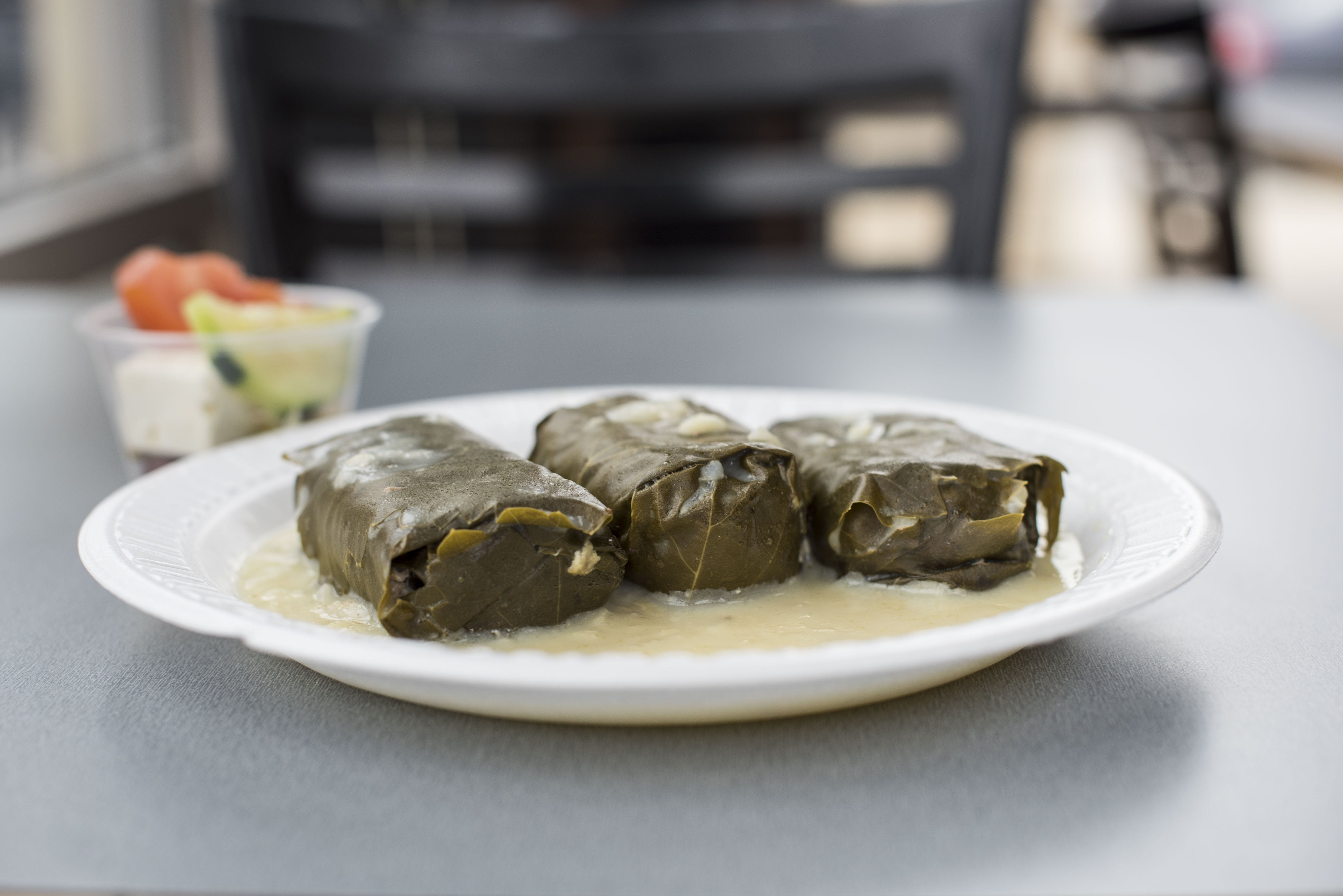 Dolmades Plate from Gyro Palace - Walker's Point in Milwaukee, WI