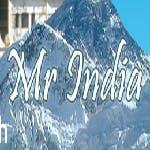 Logo for Mr. India