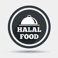 Logo for Halal Food Guys